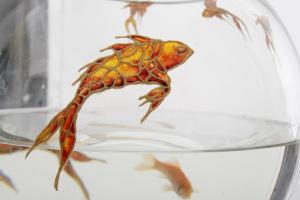 fish-on-glass-fish-bowl-by-denise-hogan